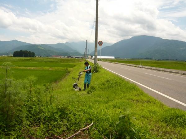 草刈 001