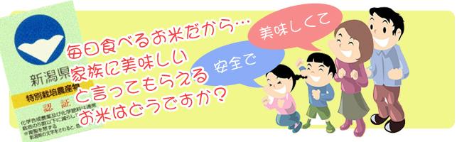 毎日食べるお米だから、家族に美味しいと言ってもらえるお米はどうですか?